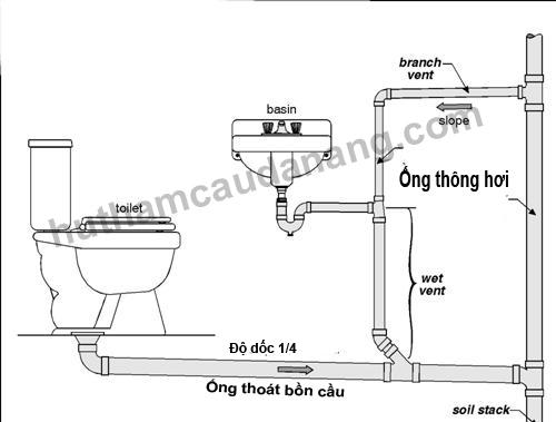 lap-ong-thoat-bon-cau