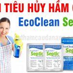 Thuốc xử lí hầm cầu Ecoclean Septic